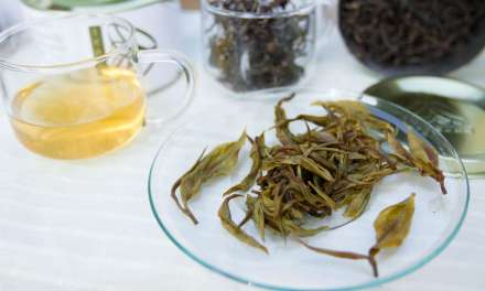 The Economic Future of Direct Trade Tea: A Look at Chinese Quality Tea