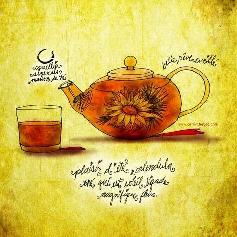 WMTSTM_Camellia_Sinensis_Calendula