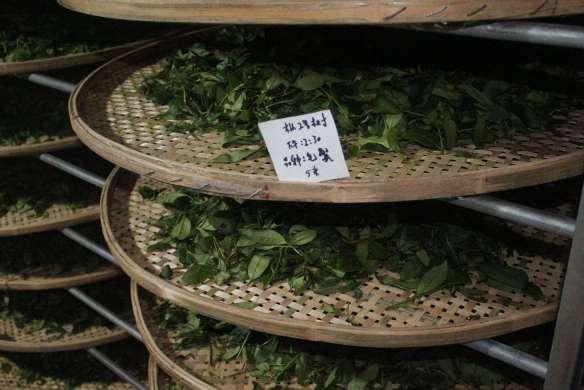 tea, a bit sorted by origin, it seems