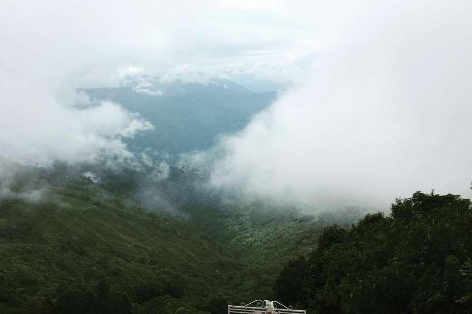 Kanchan View Tea Estate