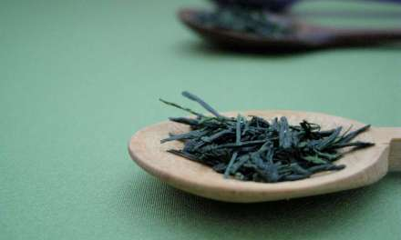 20 Surprising Things about Gyokuro Green Tea You Didn't Know About