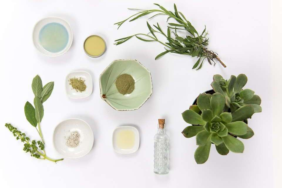 Herbs Are Your Beauty Allies