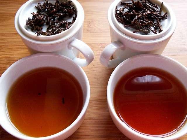 Tea Tasting: An Art for the Tea Lovers