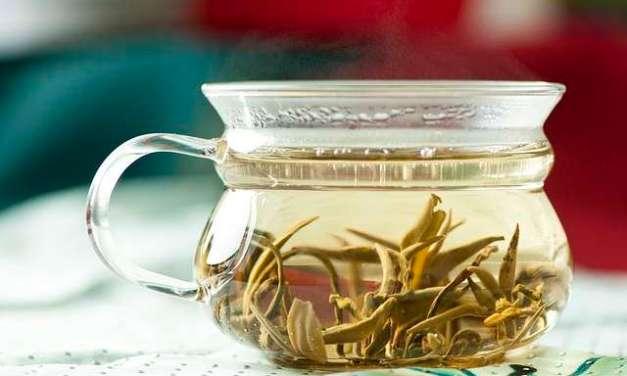 Tea Benefits for Alzheimer's