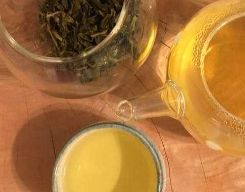 Wild Organic Tea – Third Installment