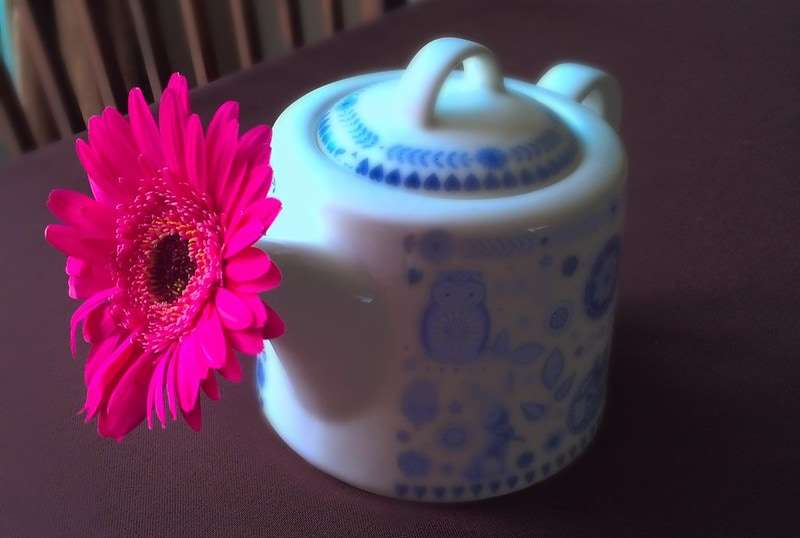 T Ching Classics: Cold Fighting - A photo of a small teapot with a daisy in sticking out of the spout