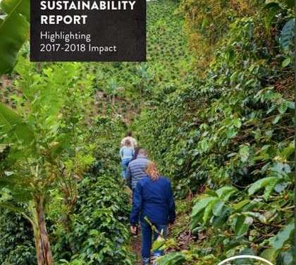 Tea Business Sustainability: Improving Performance and Value in the Tea Industry