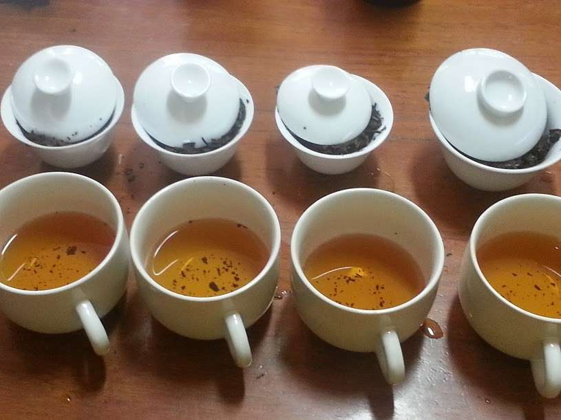 The Middle of the Tea Experience Curve – Part 2 - Photo of a row of gaiwan with cups of tea next to each one