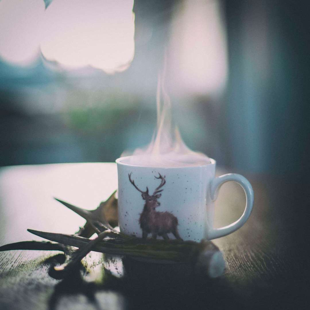 T Ching Classics: Winter Tea - Photo of steaming cup of tea with a reindeer on it and antlers nearby