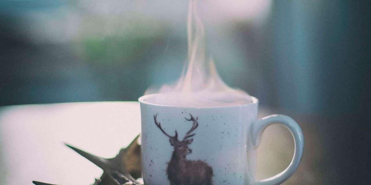T Ching Classics: Winter Tea