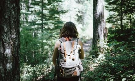 Bringing Tea on a Hiking Adventure