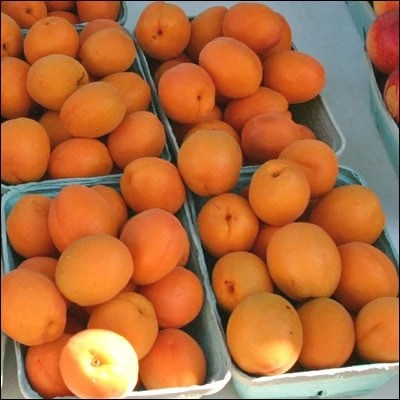 Piles of apricots