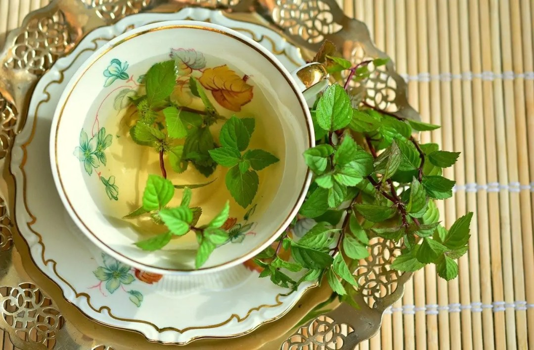 Teacup with tea, and fresh mint leaves in the cup on and spilling off the saucer