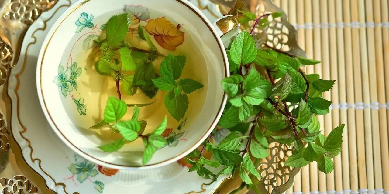 CBD Mint Tea Recipe And Its Benefits