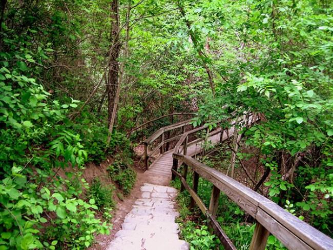Austin Day Trip to McKinney Falls State Park