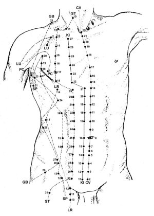 Acupuncture Point Diagrams