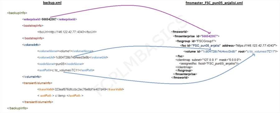File Management System - TCPLMBASICS