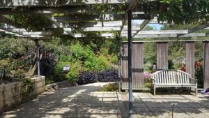 tct caterers Brookside Gardens 24 - tct-caterers-Brookside-Gardens-24