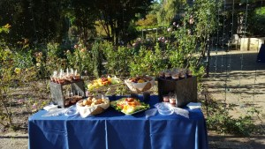 tct caterers Brookside Gardens 38 - tct-caterers-Brookside-Gardens-38