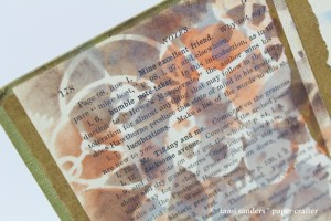 tcw - drews altered book - end papers cu wm