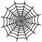 Ronda Palazzari Spiderweb