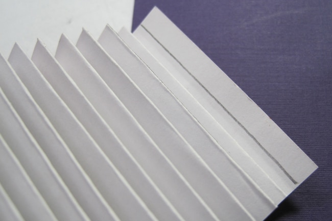 Trim excess from paper strip LEFKO