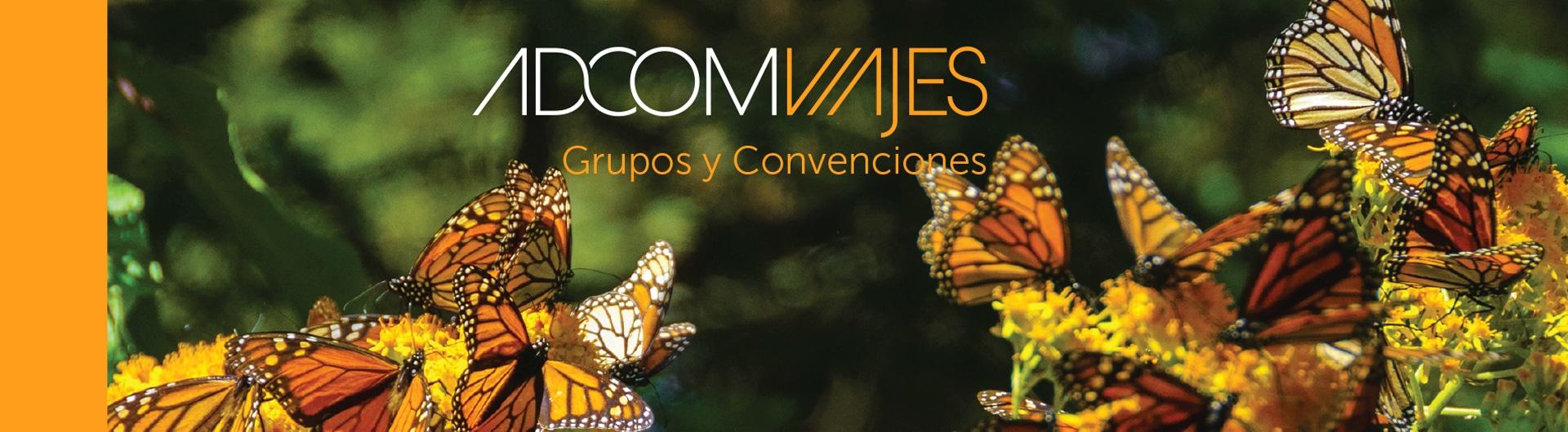 Adcom Viajes Diseño Grupos y Convenciones
