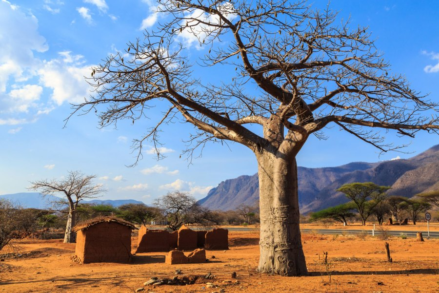 iStock 1144959831 - The Wonders On The Magical Madagascar Cycling Expedition
