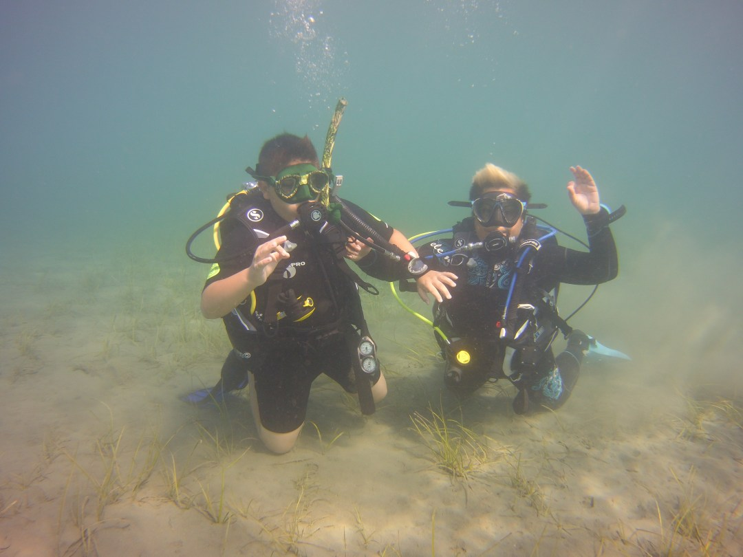 PADI courses in Cyprus