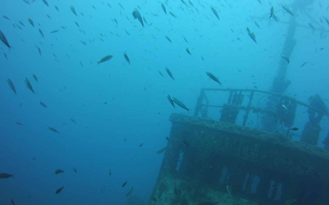 Scuba diving in Limassol
