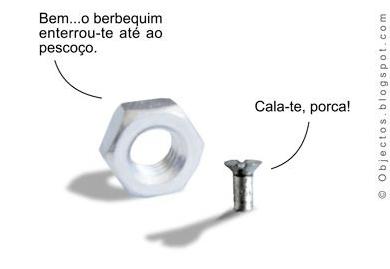 imagem-11