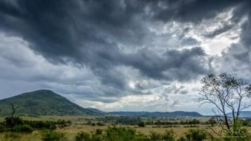 Pilanesberg 4