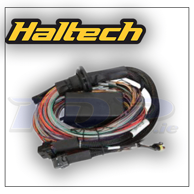 Elite 2000 premium universal wire in harness