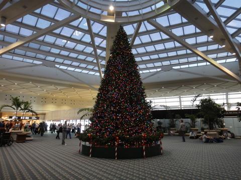 WDW_クリスマスデコレーション_オーランド空港