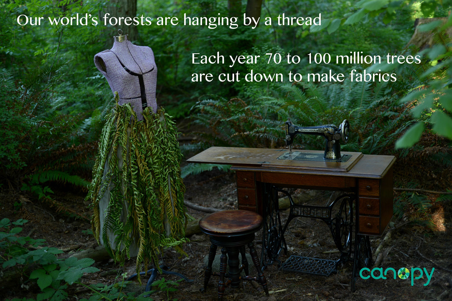 speaking for forests: you've got trees in your clothes. - the