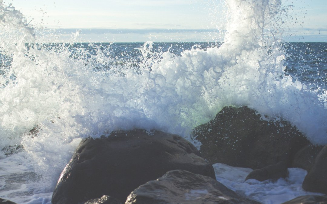 Navigating the Stormy Sea of CPD in Schools