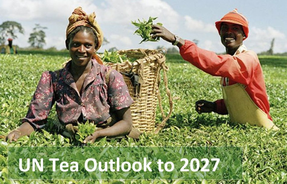 UN Tea Forecast