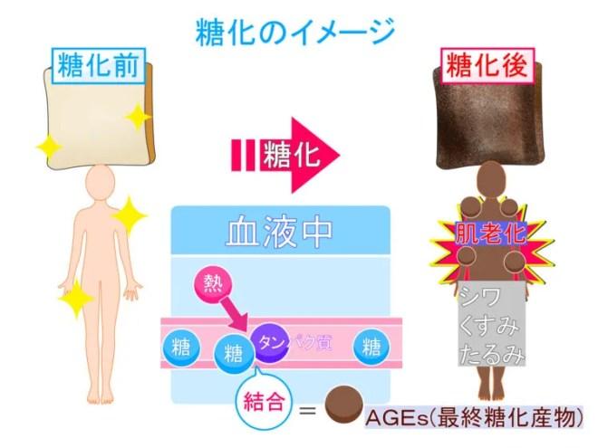 糖化による細胞の老化