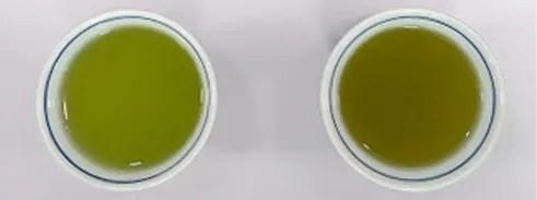 ティーパックのお茶を急須で出して比べてみました。