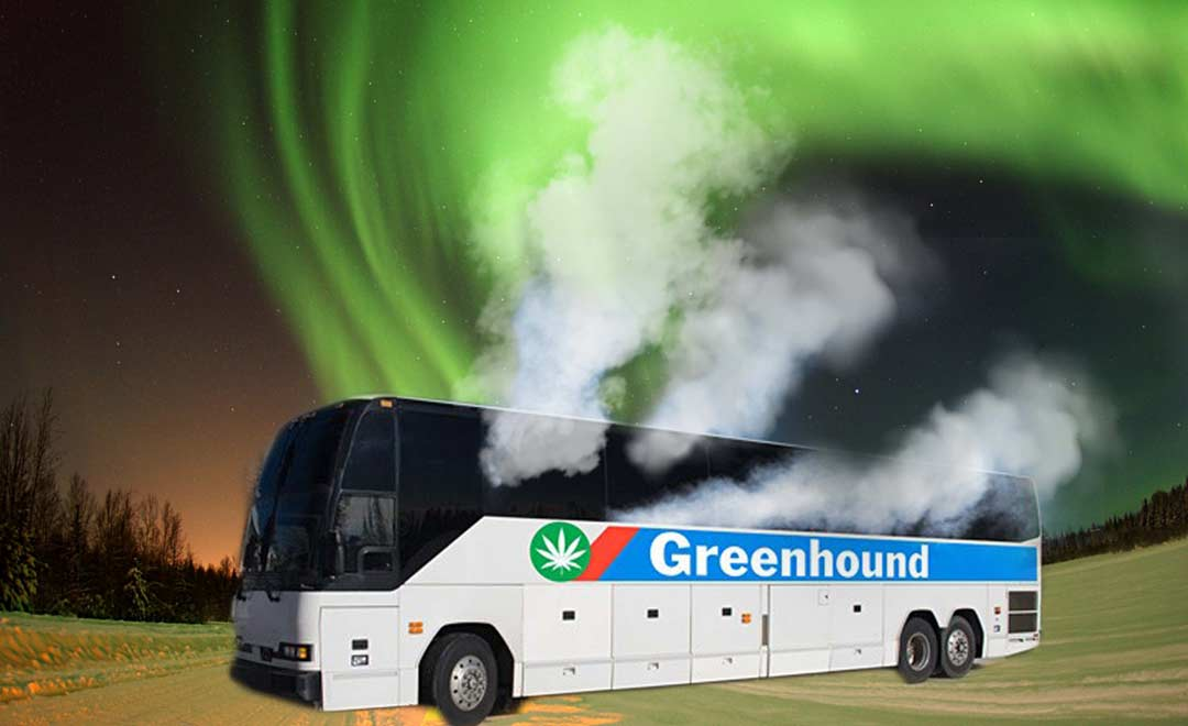 cannabis, weed, pot, legalization, legal, Canada, tourist, bus
