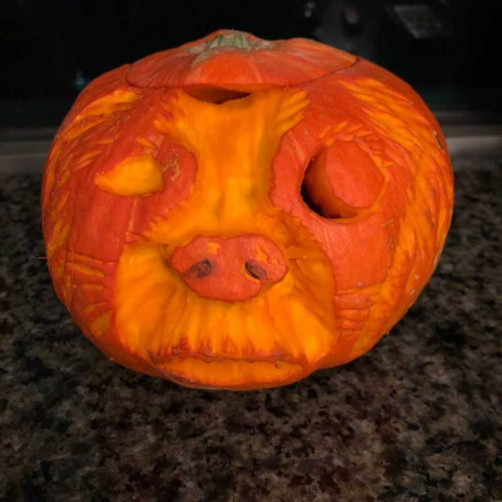 pumpkin, carving, Halloween, autumn, festivals, pumpkins, rescue dog, dog, pirate