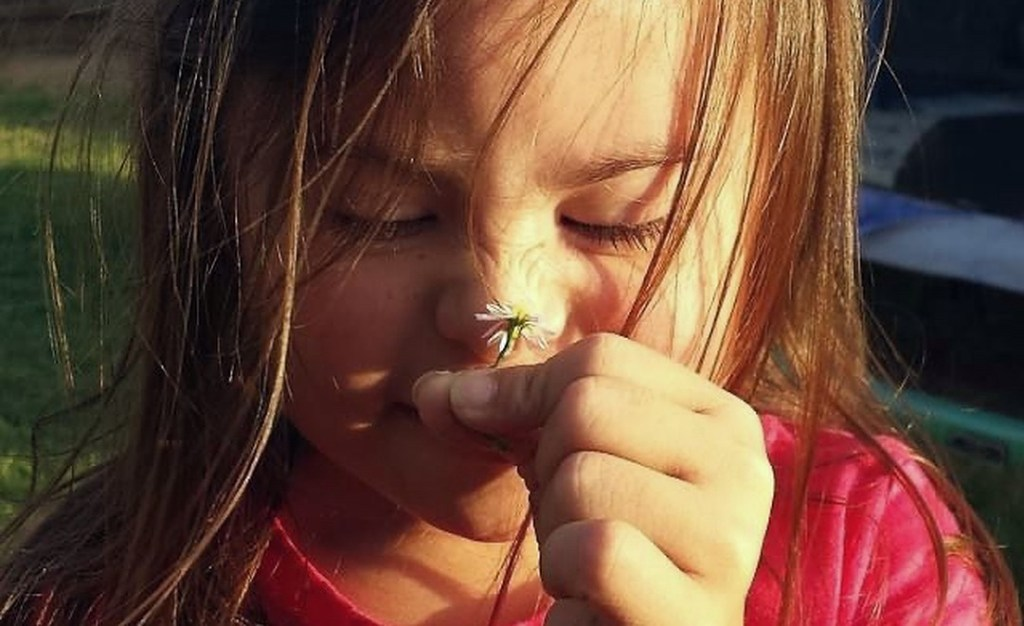 Close up on little girl's face. Celebrating down syndrome awareness month. She is smelling a flower and light on her face.