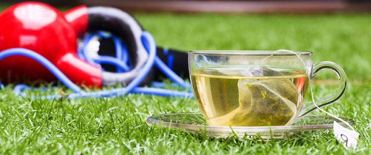 Does Drinking White Tea Actually Help You Lose Weight