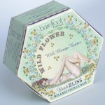 Barefoot Venus Wild Flower Bath Bliss Review Packaging