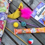 Favourite Cat Toys and Treats: Da Bird, Bamboozler, Sponge Balls, Puffs Yeowww Banana