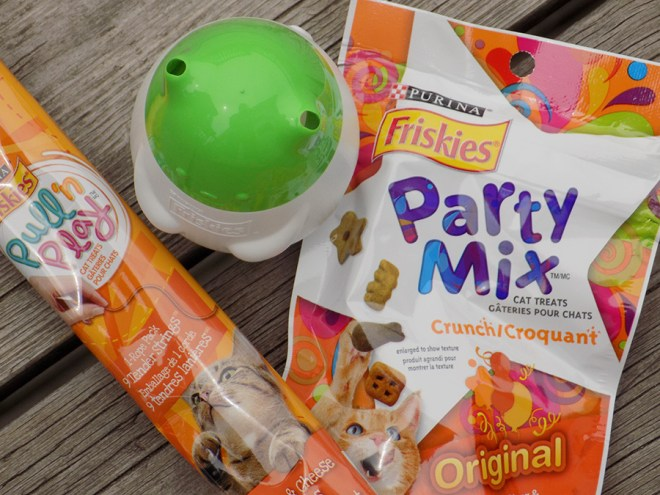 Friskies Pull n Play Chicken Cheese Treat Toy - kit