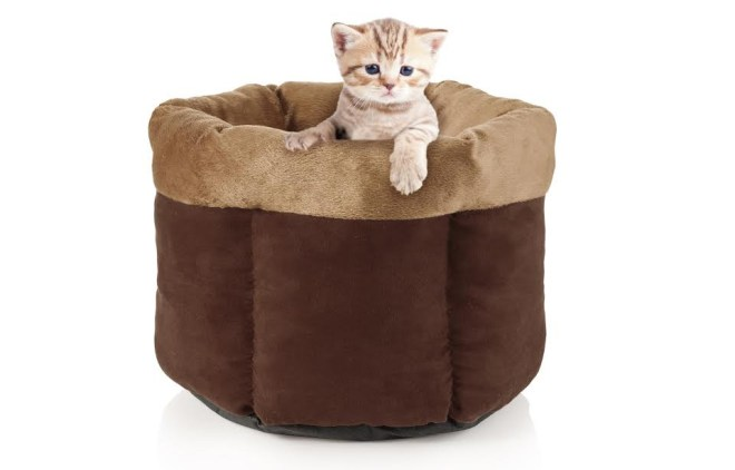 Avon Canada Plush Pet Bed Christmas 2016 Holiday Gift Guide For Pets
