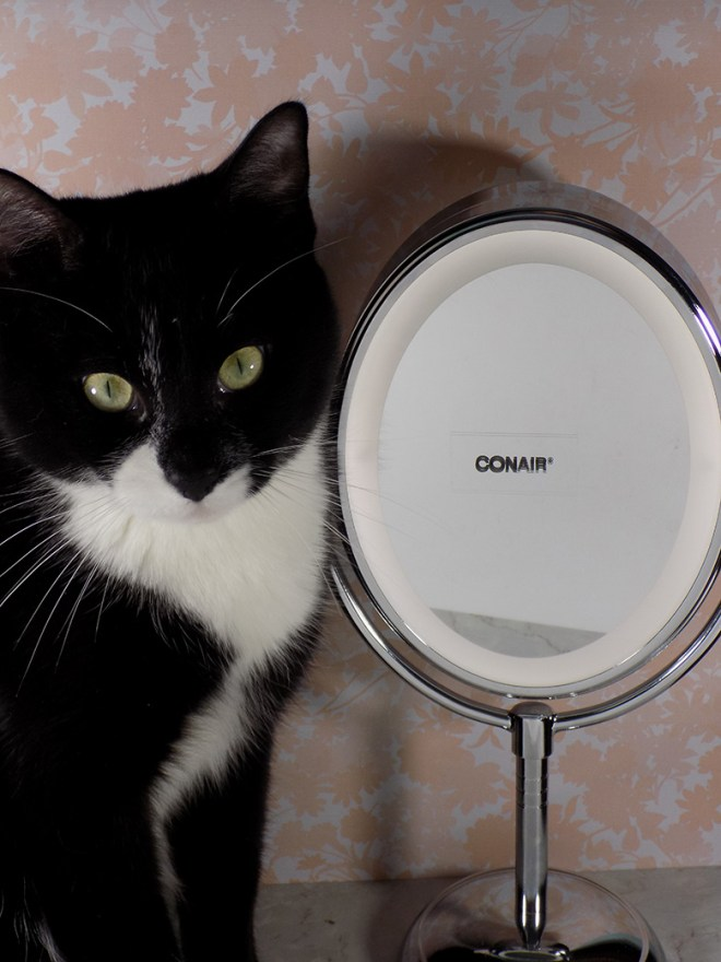 Conair Lighted Mirror - with jazz