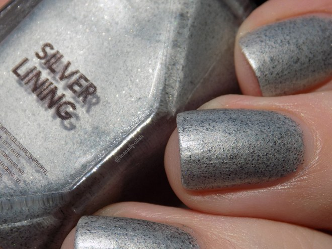 Alter Ego Fan Faves - Silver Lining - Closeup Swatch in Sunlight