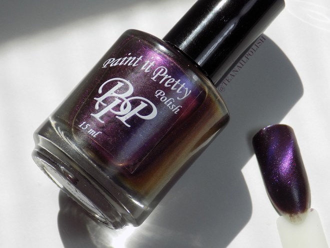 Paint t Pretty Polish Magnetic Moment Bottle and Swatch Stick